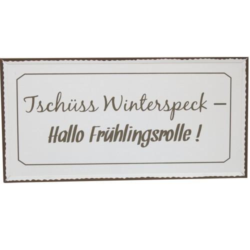 Metallschild Tschüss Winterspeck Hallo Frühlingsrolle Blechschild Schild
